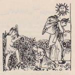 En las faldas de las montañas se cultivaba, en terrazas, maíz, tomates, patatas y otros vegetales que más tarde conocerían los europeos. Un grabado español del s. XVI muestra la recolección de patatas.