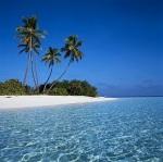 En Maldivas podremos cenar sobre una plataforma de cristal, sobre el fondo marino, con los pececillos nadando bajo nuestros pies, a la que seremos trasportados en barco.