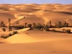 En Marruecos se puede vivir una fiesta en el desierto, comiendo su deliciosa comida, escuchando su música, montar en un dromedario y contemplar un paisaje único.